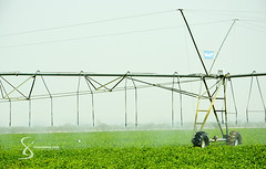 """Valley Pivot technology 