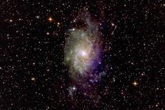 First Light (georg.schmidt) Tags: astro ngc598 astrophotography m33 modified celestron firstlight pinwheelgalaxy starlightxpress triangulumgalaxy autoguiding mx7c advancedvx eos450da gpunewtoncomacorrector palgyulai