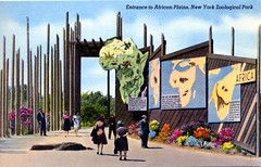 Entrance to African Plains New York Zoological Park NY (Edge and corner wear) Tags: park new york vintage zoo pc walk african bronx postcard exhibit immersive through setting zoological