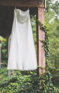 dress (1 of 1)