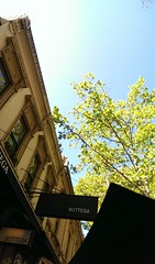 Looking up from my lunch table (PsJeremy) Tags: ombra bottega niceitalianrestaurantsinmelbourneombra