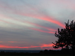 Evening sky (Kitty Terwolbeck) Tags: pink sky night clouds evening twiligh