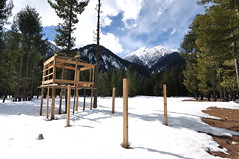 Building Dreams (Asif Saeed [....DOCUMENTING PAKISTAN...]) Tags: kumrat valley forest snow snowfallinpakistan snowfall kpk winter wintertravelinpakistan wintersurvival winterinpakistan cold sunshine landscapephotography asifsaeed mountains