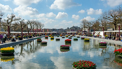 A beautiful day in Amsterdam (FotoCorn on/off) Tags: amsterdam museumplein mokum rijksmuseum tulpen flowers tourists city tulips water sky blue people spring springtime