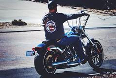The hubby on the hog! First ride of the year! (Kerstin Winters Photography) Tags: nikkor nikondigital nikondsl nikon d7200 flickr road street man hog pikespeakharleydavidson colorado ride motorists outdoor harleydavidson harley motorradfahrer motorrad motorcycle