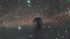 B33 (Philippe Augoyat) Tags: a7s c11 celestron horse head nebula