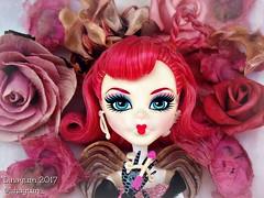 (Linayum) Tags: cacupid cupid cupido pink rosa mh monster monsterhigh mattel doll dolls muñecas toys juguetes flowers linayum