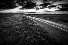 On the road again (Stéphane Sélo) Tags: bw fleursetplantes france nb noiretblanc pentax pentaxk3ii printemps ain arbre blending champ ciel clouds coucherdesoleil filé landscape light lightstream nature nuage paysage sunset voiture