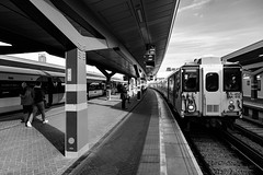 455818 arriving at London Bridge (cybertect) Tags: canonfd24mmf20 london londonbridgestation londonse1 nicholasgrimshaw se1 sonya7 southernrailway architecture blackwhite blackandwhite building class455 monochrome platform railway railwaystation station train