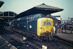 Newcastle Napiers (Bingley Hall) Tags: rail railway railroad transport train transportation trainspotting diesel engine locomotive uk britain england newcastle station platform canopy trainspotters deltic passenger napier englishelectric class55 br britishrail blue 9008 55008