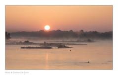 Le jour se lève sur la terre (Bruno-photos2013) Tags: loire loireatlantique brume brouillard bretagne fleuve france foggy leverdujour sunrise