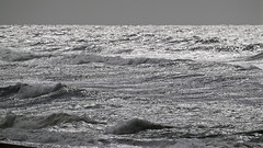 Unsettled Sea (lennycarl08) Tags: ocean blackandwhite pointreyesnationalseashore california marincounty