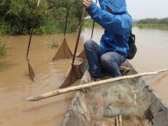 Lift-Net Fishing