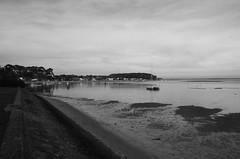 151227IMGP7745 (aureliedumartin) Tags: borddemer villages de pêcheurs cap ferret noir et blanc seaside