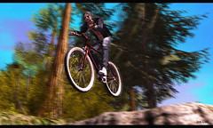 Nooooooooooo............ (Jos Loll) Tags: bike bicycle jump forrest rock crash