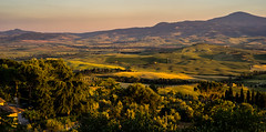 Golden Hour approaching (*Capture the Moment* (OFF till End June)) Tags: 2015 himmel italien italy landschaft leitzsummiluxm1450 panorama panoramablick pienza sky sommer sonya7m2 sonya7mii sonya7ii sonyilce7m2 sunset toskana tuscany