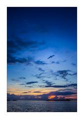 IMG_7757 (Carlos M.C.) Tags: holbox mañana madrugada despertar blanco negro color barco bote lancha ferry camarote rojo azul salvavidas amarre cuerda botes