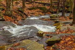 Wrinkled Water In Wolf Brook (John Kocijanski) Tags: odc wrinkles water stream brook landscape forest spring canon24105mmf4l sullivancounty