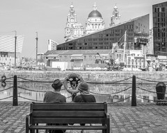 taking in the view (shoot what you see) Tags: liverpool albertdock pierhead liverbuilding view merseyside mono couple bench dock man woman street candid leica m246 monochrom 50mm 50mmelmar yellowfilter lightroom dxo5filmpack greatwesternrailway bw