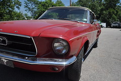"""1967 Ford Mustang Convertible • <a style=""""font-size:0.8em;"""" href=""""http://www.flickr.com/photos/85572005@N00/33593968585/"""" target=""""_blank"""">View on Flickr</a>"""