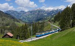 Blue & Cream (david_gubler) Tags: abde88 4000 mob montreuxberneroberlandbahn saanenmöser railway train blue cream