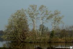 De Stuwe-5167 (Josette Veltman) Tags: vechtdal photowalk de stuwe overijssel vecht vechtstreek vilsteren dalfsen ommen ganzen landschap landgoed water nederland