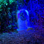 Leota tombstone, Haunted Mansion, Walt Disney World, Orlando, Florida, USA thumbnail