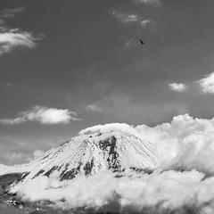 Mt. Fuji from Lake Tanuki (Greg Tokyo) Tags: 2017 6d japan mountfuji bird clouds bw monochrome tanuki lake