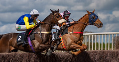 Side by Side (Nigel Jones LRPS) Tags: horse race jump rider pointtopoint aldington