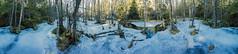Frozen Marshland in the Tyresta National Park 19th of March 2017 (ZoeEnPhos) Tags: tyresta tyrestanationalpark bog kärr mosse vinter winter ice deadwood årsjön march sweden marshland panorama canonef14mmf28lii canoneos5d is fissurevalley lightroompanorama