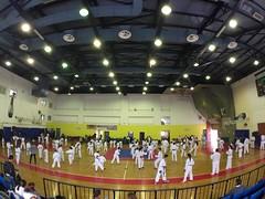 stefanou_seminario_aprilios_2017_768