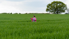 Lost in sea of greens (rrestout) Tags: unitedkingdom 1who england tree nature architecturalstyles rural green family europe countryside field elise