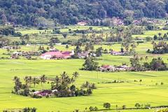 Greenfield #Tarutung #tapanuli_utara #tapanuliutara #saitnihuta #sawah #perdesaan #kota_tarutung #tapanuli #wonderful_indonesia #landscape_indonesia #hamparan_sawah (jackhtbarat) Tags: hamparansawah saitnihuta sawah tapanuliutara kotatarutung wonderfulindonesia landscapeindonesia tarutung tapanuli perdesaan