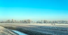 Frozen fields and a blue sky. (Alex-de-Haas) Tags: 50mm d5 dutch hdr january nederland nederlands netherlands nikkor nikkor50mm nikon nikond5 noordholland thenetherlands warmenhuizen westfrieseomringdijk bevroren cityofwarmenhuizen cold daglicht daylight frozen gevroren handheld highdynamicrange icy januari koud landscape landschap licht light overdag polder polderlandschap sun sunray sunrays sunbeams sunny sunrise winter zon zonnestralen zonnig zonsopgang