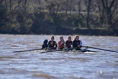 ABS_0125 (TonyD800) Tags: steveneczypor regatta crew harritoncrew copperriver rowing cooperriver