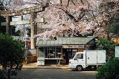 食事小店|上野公園 (里卡豆) Tags: olympus penf 25mm f12 pro 2512pro 上野公園 東京 tokyo japan 日本 關東 kanto 東京都