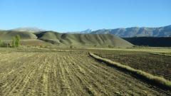 Na cestě z Erzincanu do Erzurumu (zcesty) Tags: dosvìta tr turecko hory krajina pole turecko7 dosvěta