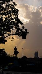 Solitary knight (milachirolde) Tags: sunset madridatardecer atardecer streetphoto contraluz contrast knight letsexplore goldenhour