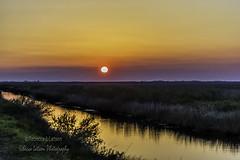 Telephoto Sunrise at BNWR (rebeccalatsonphotography) Tags: sunrise morning sun bnwr brazoria nationalwildliferefuge wildliferefuge rebeccalatsonphotography tx texas wetlands flatland morningcolors
