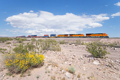 BNSF 3739 @ Klondike, CA (Mathieu Tremblay) Tags: california unitedstates klondike ashhill bnsf burlington northern santa fe railroad railway chemin fer train ge general electric gevo et44c4 3739 sony a99 minolta 1735 container desert mojave spring printemps