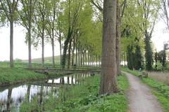 Ruta a Damme (Erasmusenflandes) Tags: eramsusgante damme visitdamme visitbrugge visitar brujas erasmus en flandes campos verdes de ruta por bici excursión belgica belgium belgie belgique naturaleza verde