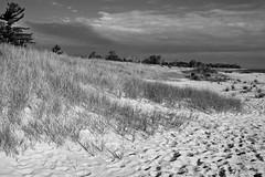 Glen Haven Beach, MI, 2005 (Tom Powell) Tags: glenhaven leelanau glenarbor michigan monochrome blackandwhite 2005 beach canoneos20d