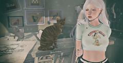 .[559] (yram_cobain) Tags: mello gato serenitystyle yourdreams kite secondlife