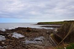 DSC_0163 (prettyredglasses.com) Tags: seatonsluice beach englishcoast northeastengland seaside nature exploreearth lighthouse stmaryslighthouse seasideview