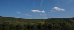 Vineyards (nikjanssen) Tags: germany landscape vineyards mosel moselle moezel wijngaarden