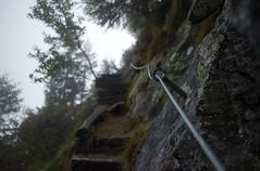 Sassariente trail . part III (Toni_V) Tags: mist fog clouds schweiz switzerland tessin ticino europe dof nebel suisse bokeh hiking 28mm rangefinder trail svizzera wanderung m9 wanderweg 2014 svizra elmaritm messsucher ©toniv sassariente leicam9 140920 digaverzascasassarientebellinzona l1018808