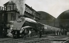 THE ELIZIBETHAN DEPARTING KINGS CROSS 1954 (Xdriver2) Tags: london train golden edinburgh cross pacific north railway kings british express elizabethan a4 eastern railways plover the lner 462 gresley 60030