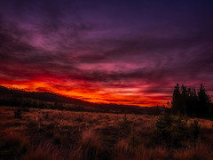 GEPC Men's Mountain Experience 2014 (gepcphotos) Tags: autumn usa mountain fall landscape photography photo colorado image hiking united location best land type specs states