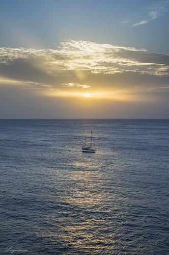 Barco tardío