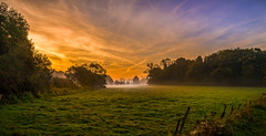 Early Morning (dkphotographs) Tags: morning autumn trees red sky orange sun sunlight fall nature beautiful field yellow misty fog clouds rural sunrise fence landscape countryside early wildlife country foggy hazy sonyslta57 sonyalpha57